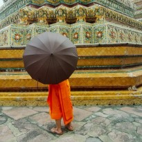Shy monk with umbrella