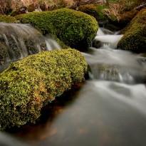 O brook stream
