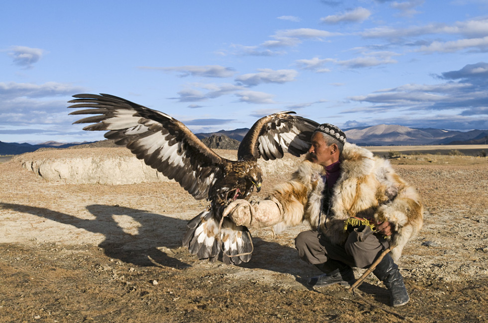Dalai Han, a Kazakh eagle hunter with his Golden Eagle Bayan-Ulgii in Altai Mountains western Mongolia (photo credit: David Tipling)